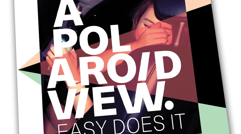 A Polaroid View