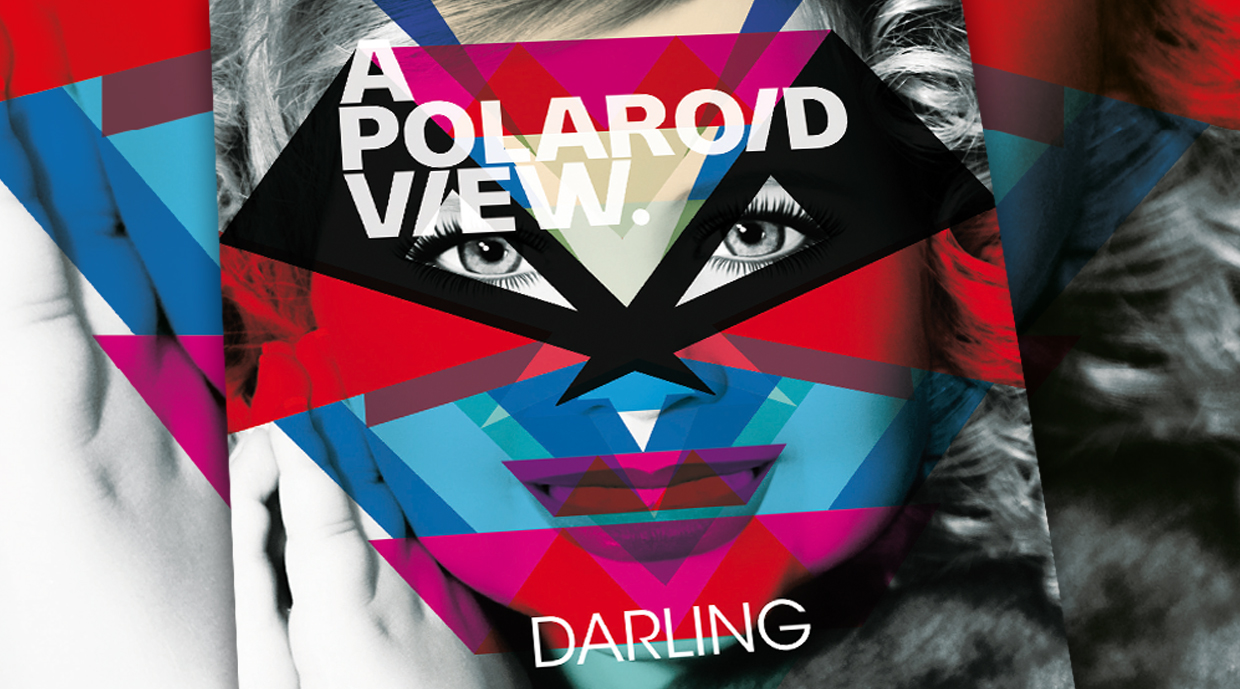 A Polaroid View | Darling